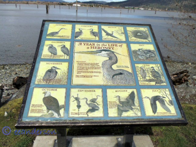info about estuary sign
