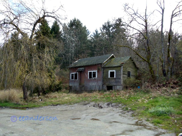 old abandoned cottage